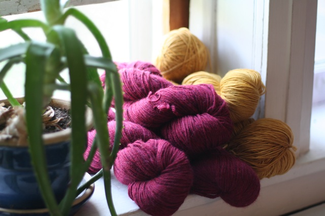 Yarn splurge