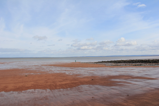 The beach at the base of Blomidon. The tide is somewhere between a third of the way and halfway out. That speck in the middle is L.